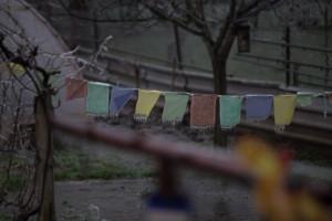 Motlitební praporky vydrží obří zimu v himaláji, ale rajhradický mráz nepřežili.