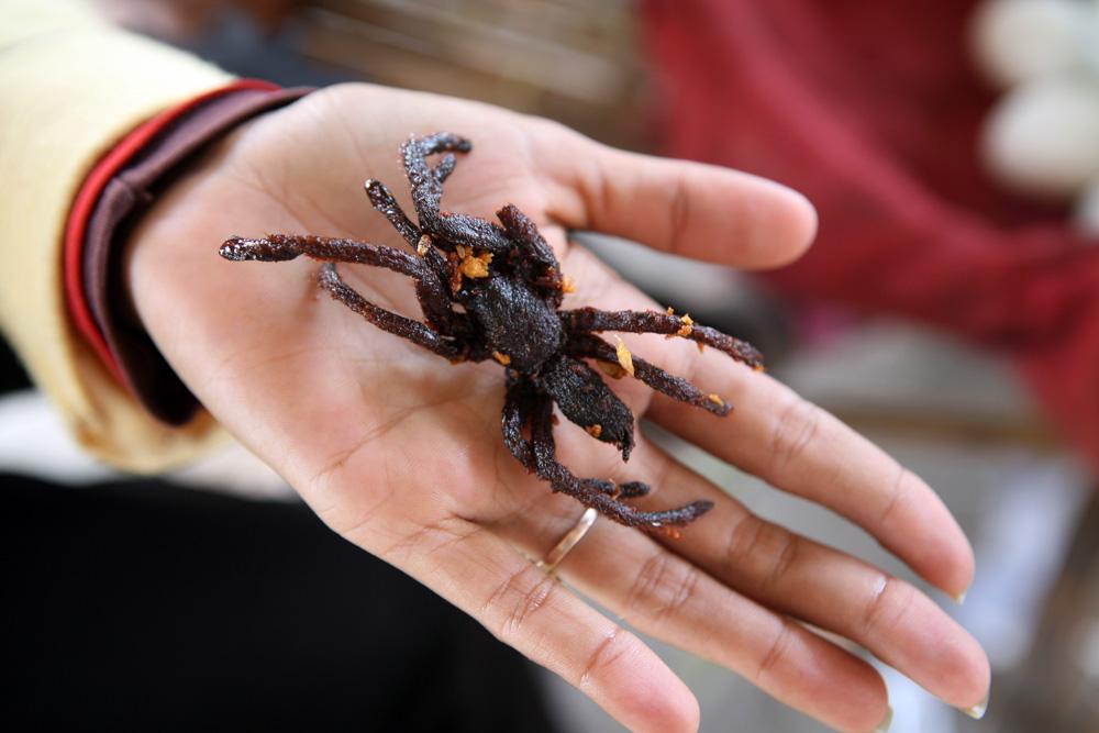 Pečení pavouci jsou v Kambodži k sehnání skoro všude.