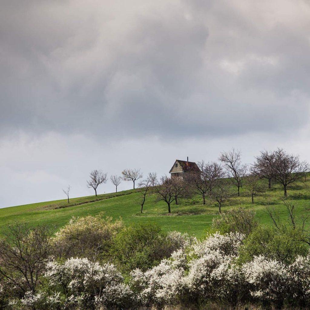 Early spring in South MoraviaCzech republic tripcendo mylifeoutside beautifuldestination mylosthathellip