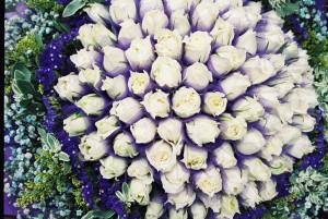 Kytky z flower marketu.