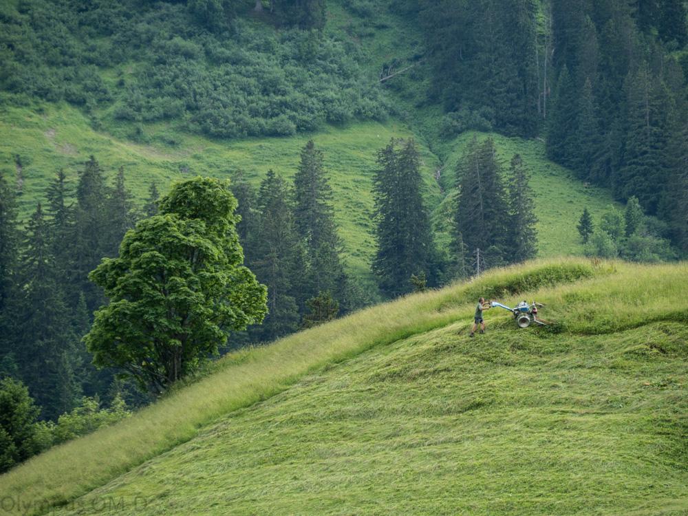 Sekání trávy na příkrých svazích byl jedním z velkých zážitků ve Schröckenu letos začátkem léta.