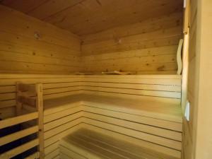 Sauna se v zimě vždycky šikne.