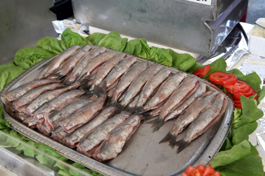 syrová ryba