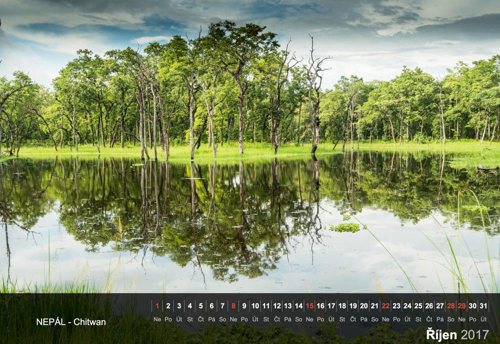 Jezero v pralese v národním parku Chitwan.