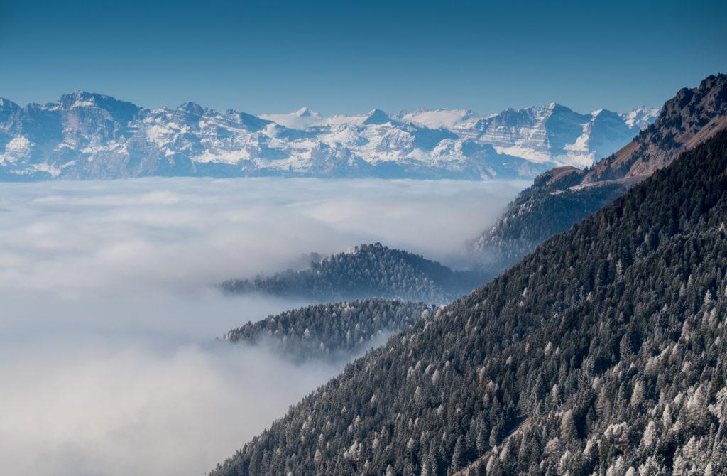 Brentské Dolomity viditelné z ski areálu Latemar.
