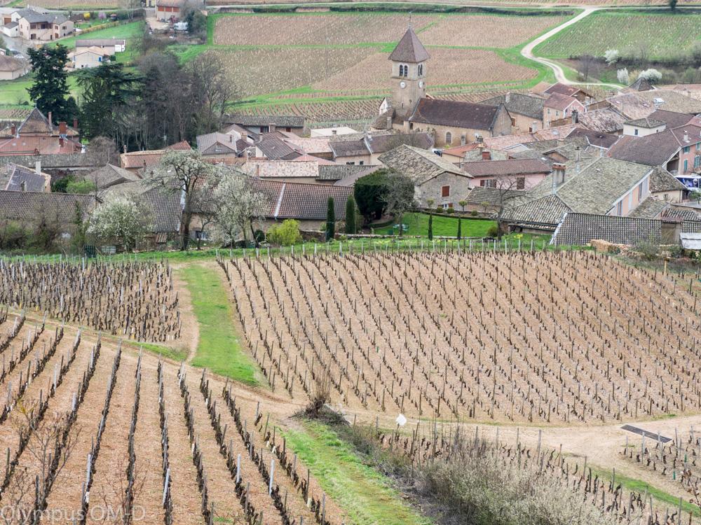 Nad vesnicí Solutré Pouilly.